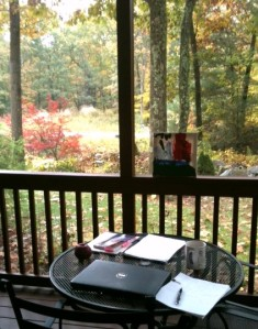 Writing on screen porch